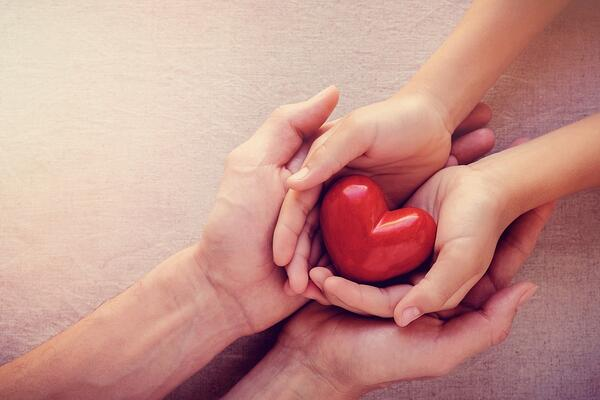 adult-and-child-hands-holiding-red-heart-health-care-love-give-hope-picture-id861080120