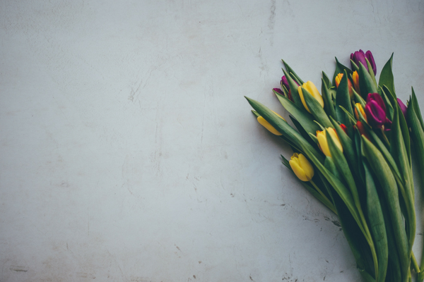 Photo of spring flowers for Easter | Sparkhouse Blog