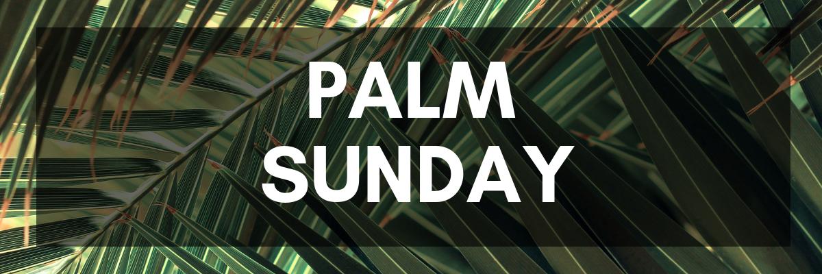 041419_blog_palm-sunday-joy