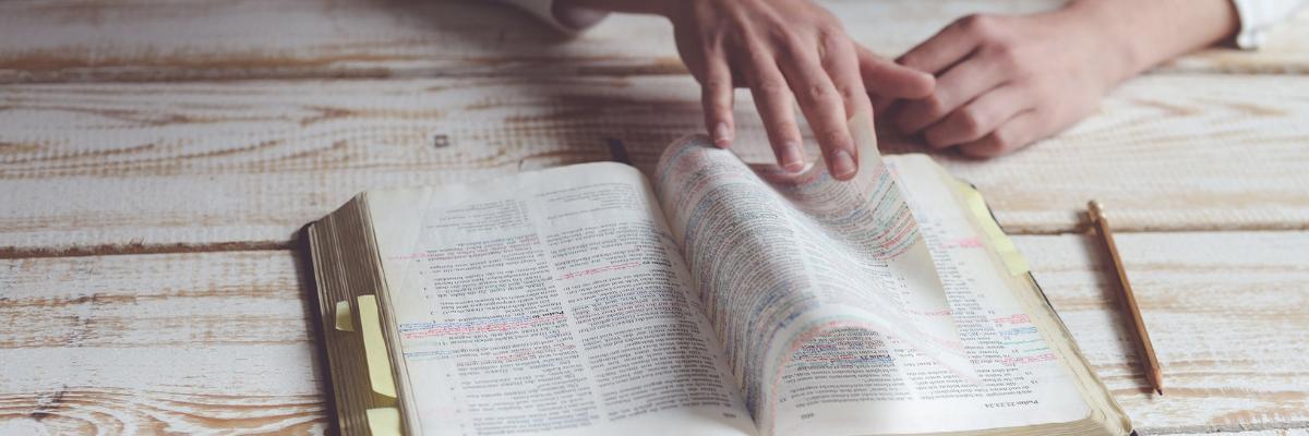 051619_SCH_blog_studying-bible