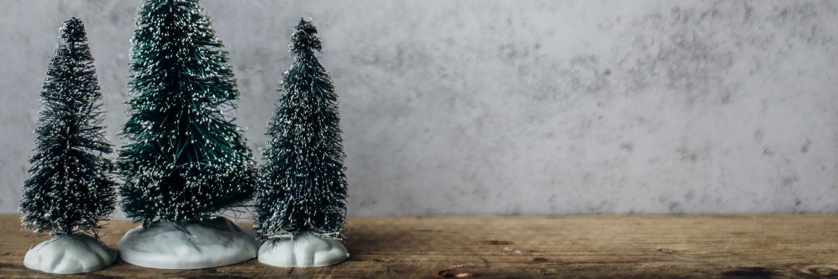 SHC_blog_christmas-trees
