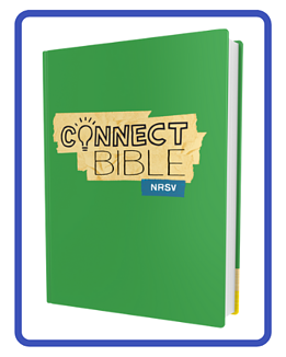 SCH_Connect_Bible-hardcover