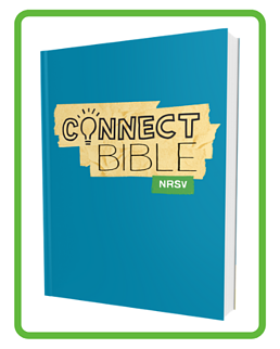 SCH_Connect_Bible-paperback